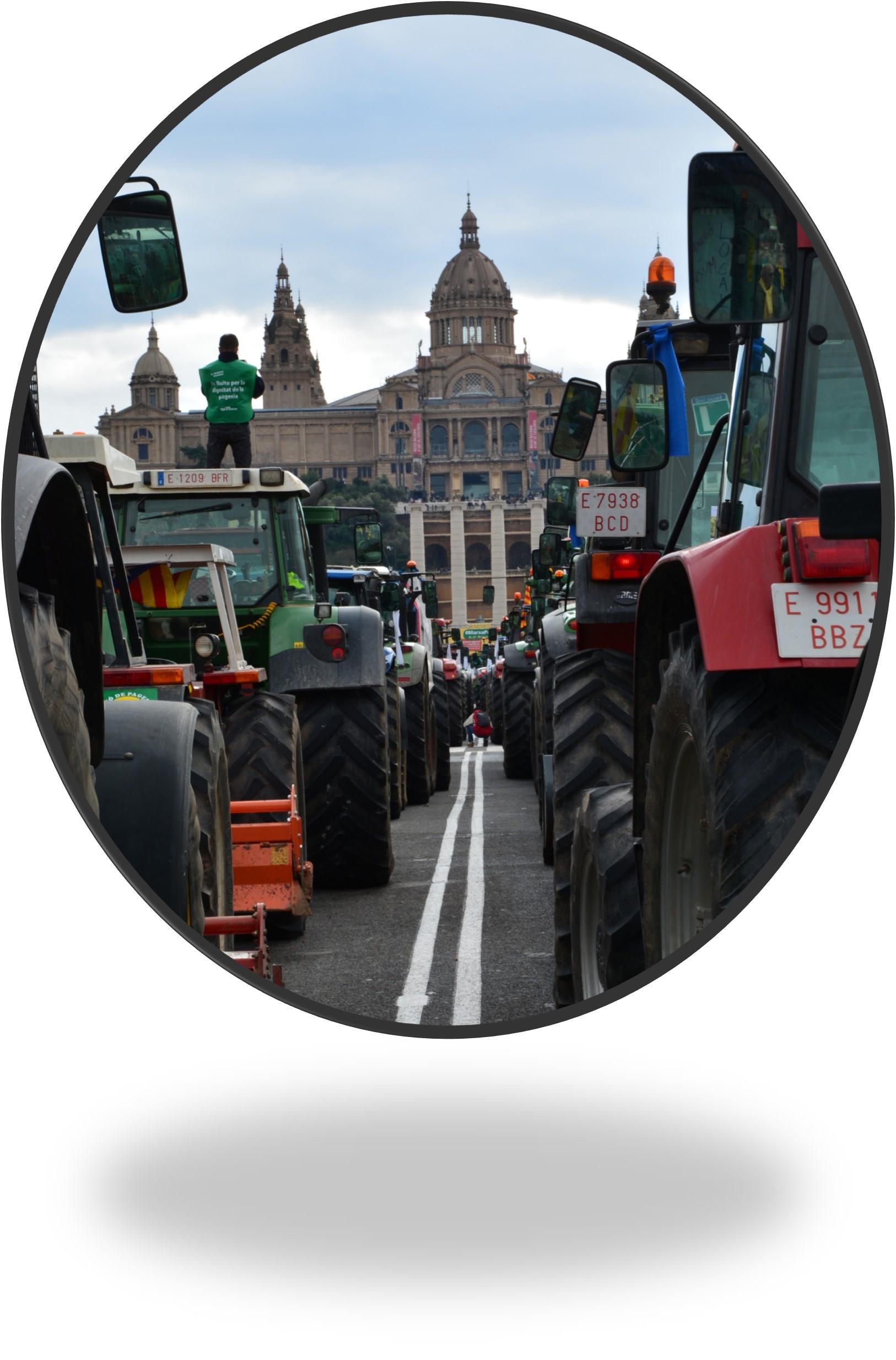 Barcelona, Capital de la Agroalimentació catalana